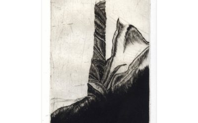 Galerie Gravures taille Douce